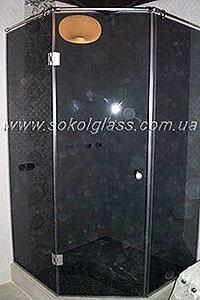 Стеклянная дверь в душевую цена